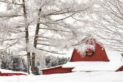Celeiro coberto de neve e árvores Fotografia de Stock