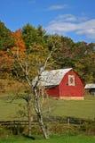 Celeiro da edredão & Autumn Foliage & x28; vertical& x29; foto de stock
