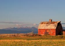 Celeiro de Colorado Fotos de Stock Royalty Free