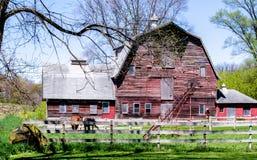 Celeiro e cavalos de madeira rústicos em Michigan Fotografia de Stock Royalty Free