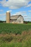 Celeiro e silo atrativos em Wisconsin Fotos de Stock Royalty Free