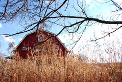 Celeiro e trigo vermelhos do outono imagem de stock royalty free