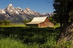 Celeiro histórico e a escala de Teton: Fotografia de Stock