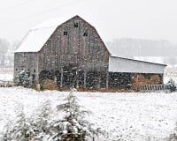 Celeiro nas nevadas fortes Imagem de Stock