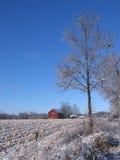 Celeiro nevado em Dexter Fotografia de Stock
