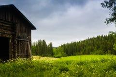 Celeiro velho e os campos do verão foto de stock royalty free