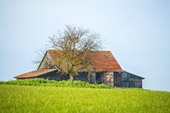 Celeiro velho no verde Imagem de Stock