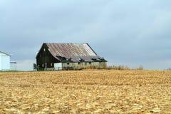 Celeiro velho pelo campo de milho colhido Fotos de Stock
