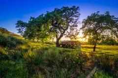 Celeiro velho sobre o campo Morgan Hill Fotografia de Stock