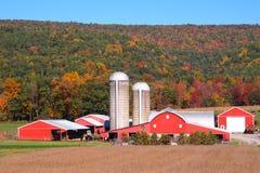 Celeiro vermelho de Amish no vale da luz do sol imagem de stock