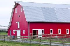 Celeiro vermelho na exploração agrícola Fotos de Stock