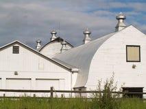 Celeiros da exploração agrícola da tradição no branco. imagens de stock