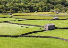 Celeiros de pedra, Gunnerside Fotografia de Stock
