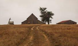 Celeiros e árvore com a estrada de terra na manhã nevoenta no condado de Mendinico imagens de stock royalty free