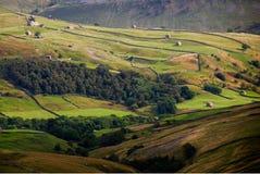 Celeiros e paredes de Swaledale Fotografia de Stock Royalty Free
