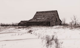 Celeiros na deterioração na paisagem da pradaria do inverno Fotos de Stock