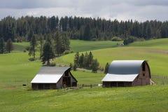 Celeiros no prado Foto de Stock Royalty Free