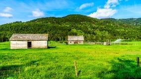 Celeiros velhos ao longo da estrada da angra de Heffley-Louis dentro BC, Canadá Foto de Stock Royalty Free