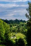 Celeiros velhos em um monte pela floresta imagens de stock