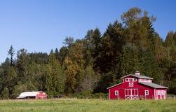 Celeiros vermelhos no verão Fotografia de Stock Royalty Free