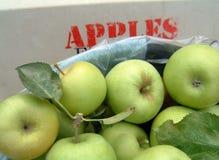 Celemín de manzanas Foto de archivo