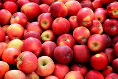 Celemín de manzanas rojas imágenes de archivo libres de regalías