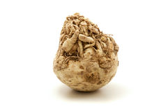 Celeriac Royalty Free Stock Image