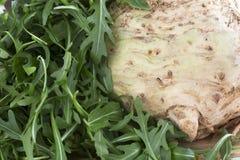 Celeriac and Arugula Stock Photo