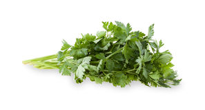 Celery. Stock Images