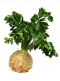 Celery. Celeriac white background in studio Stock Photo