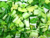 Celery stock photography