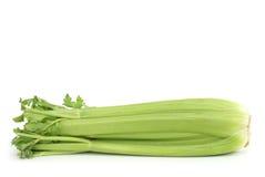 Celery Stock Photos