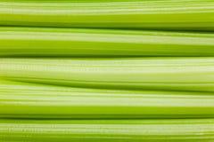 Celery background, full depth of field Stock Photo