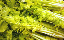 Celery Bunches Royalty Free Stock Photos
