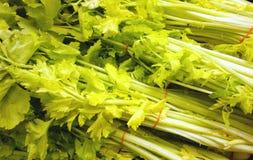 Celery Bunches Royalty Free Stock Photos