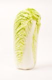 Celery cabbage Royalty Free Stock Photos