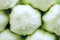 Celery cabbage Royalty Free Stock Images