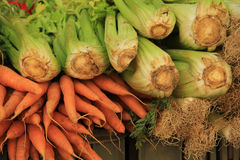 Celery and carrots. At a market stall Royalty Free Stock Photos