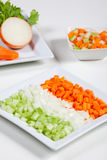 Celery, carrots, onion and vegetables Stock Photography