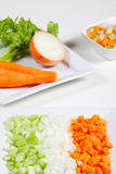 Celery, carrots, onion and vegetables Royalty Free Stock Photos