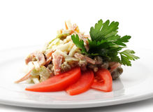 Celery and Chicken Salad Royalty Free Stock Images