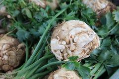 Celery on Farmers Market stock photo