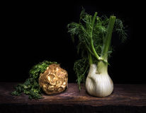 Celery and fennel. A celery root and a fennel bulb on a wooden table on dark background Stock Photos
