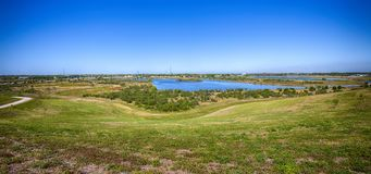 Celery Fields Panorama With A Clear Blue Sky royalty free stock photos