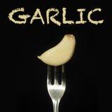 Celery on fork Stock Photography