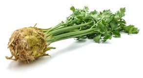 Celery. Fresh celery root with leaves isolated on white background one bulb closeupn Stock Image