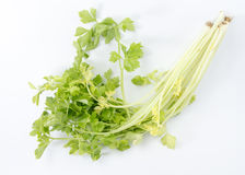 Celery. Isolated on white background Royalty Free Stock Image