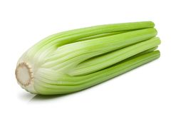 Celery isolated on white background, clipping path Stock Images