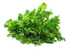 Celery Leaves Royalty Free Stock Photography
