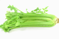 Celery leaves and stalks. Picture of celery (Mediterranean specie) stalks, leaves and beginning of the root Royalty Free Stock Image